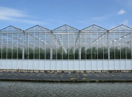 Glazen huizen met tomatenplanten langs een kanaal