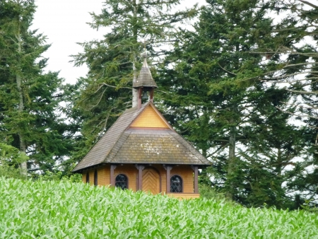 A wooden church with slates on the roof in the Black Forest in Germany photo