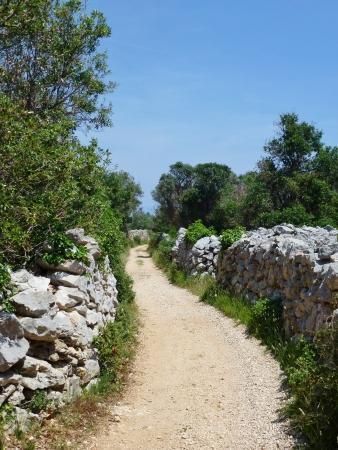 Drywalls on the island Olib in the Adriatic sea in Croatia photo