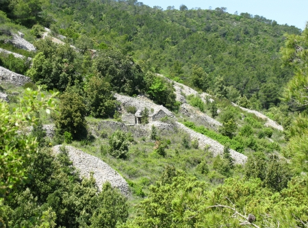 drystone: Dry stone walls in the hills of the island Vis in Croatia