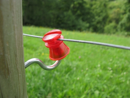 conduction: Electric cattle fence along a meadow with a plastic insulator on a wooden post
