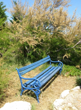 A blue bench of wood along a walkway along the coast of the Adriatic sea photo