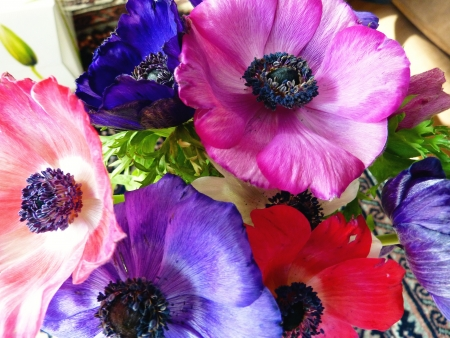 Colorful anemone flowers in a bouquet