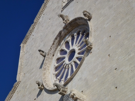 foggia: A detail of the cathedral of Trani in Apulia in Italy