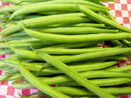 haricot vert: Fresh french beans on a kitchen towel
