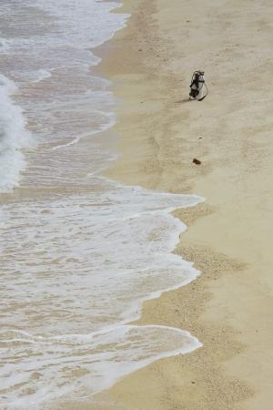 cilinder: Un cilindro di ossigeno sulla spiaggia di un'isola filippino