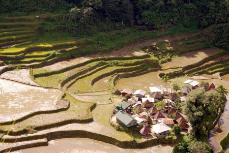 The village Bangaan with rice fields in northern Luzon in the Philippines photo