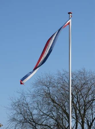 A vane of the  Dutch flag opposite a tree with barren branches in winter Stock Photo - 16730099