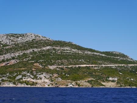 shure: The green hills of Peljesac in Croatia with the mediterranean evergreen vegetation