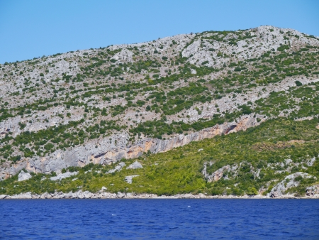 shure: The green but rocky hills of Peljesac in Croatia with the mediterranean evergreen vegetation