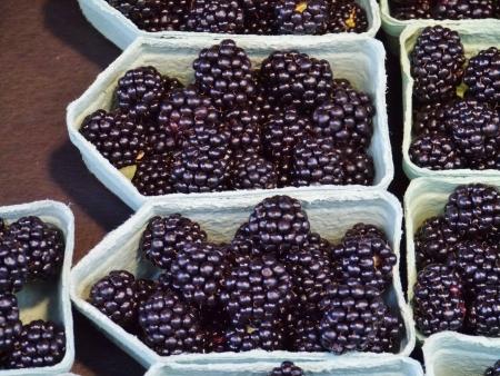 greengrocer: Bayas negras en cajas en la verduler�a en el mercado