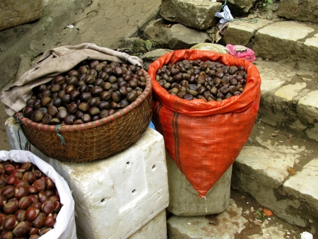 Chestnuts on a market place in Sapa in Vietnam Stock Photo - 17259112