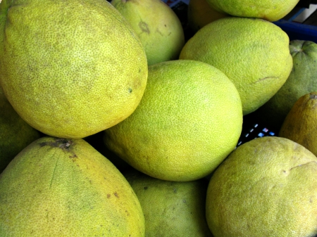 Fresh green guave fruits in Vietnam Stock Photo - 17453658