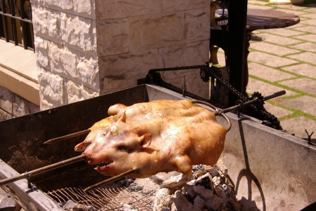 Roasting a pig at a spit photo