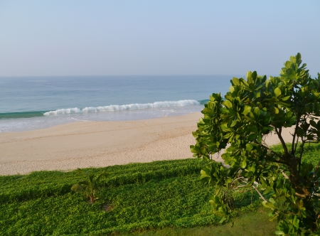 sea poison: The beach of Koggala in Sri Lanka with breakers in the Indian ocean green plants and a sea poison tree Stock Photo