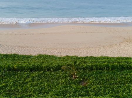 The beach of Koggala in Sri Lanka with breakers in the Indian ocean and green plants Stock Photo - 17816878