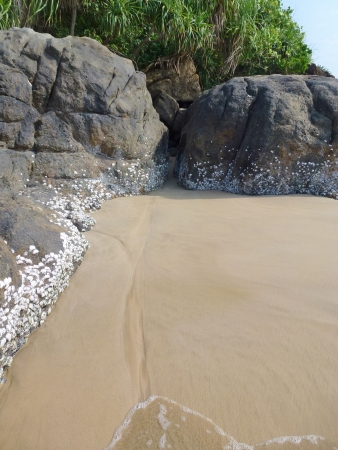The sandy beach with rocks at the Indian ocean in Sri Lanka Stock Photo - 18233586