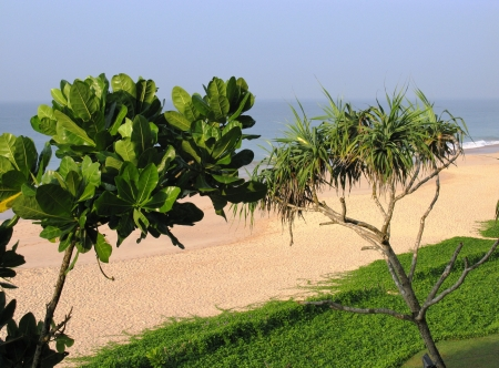 The beach of Koggala in Sri Lanka in the Indian ocean and green plants Stock Photo - 18199730