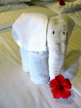 An elephant of cotton towels with a red hibiscus flower as a decoration on a bed Stock Photo - 18230003