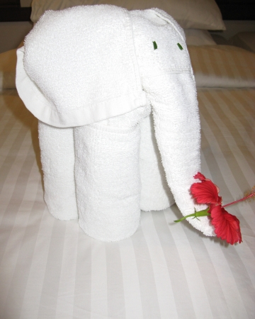 An elephant of cotton towels with a red hibiscus flower as a decoration on a bed Stock Photo - 18216367