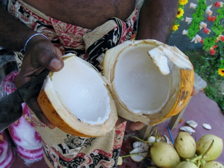 A cut open coconut with the white fruit pulp Stock Photo - 18264774