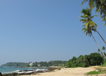 vegatation: The beach with the rocks and vegatation and the Indian ocean in Sri Lanka