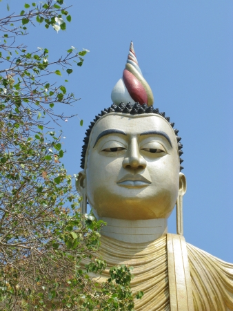 A huge Buddha at wewurukannala Vihara temple in Sri Lanka Stock Photo - 18264784