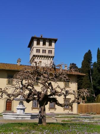 The villa la Petraia in Castello near Florence in Italy Stock Photo - 18889045