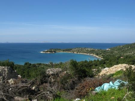 The Kosirina bay of the island Murter in Croatia Stock Photo - 19220641