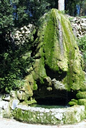 a fountain with mosses in the garden of the villa la Petraia in Castello  in Italy Stock Photo - 19220734