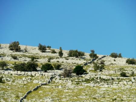 dalmatia: The island Kornat in the Kornati national park in Croatia