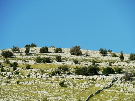 kornat: View of the island Kornat in Croatia Stock Photo