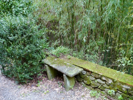 garzoni: The garden with a bench of stone of the villa Garzoni in Collodi in Italy Stock Photo