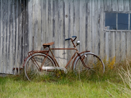 A rusty bicycle  at the countryside of the island Faro in Sweden photo