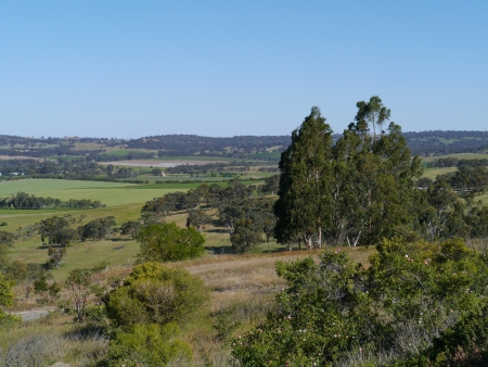 maintains: A rural landscape in Clare valley in Soutrh Australia