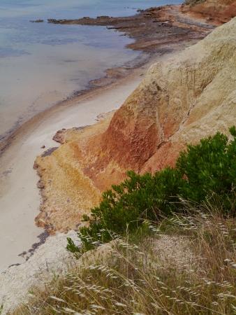 The colourful coast of Kangaroo island in Australia photo