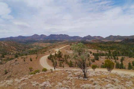 ranges: Paesaggio del Flinders Ranges del South Australia