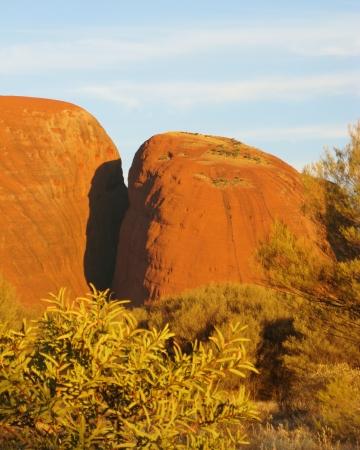 tjuta: The Olgas in the Northern territory in Australia
