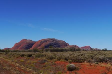 olgas: The Olgas in the Northern territory in Australia