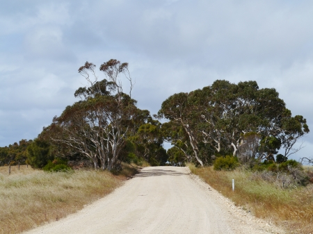 Unsealed road on Kangaroo island in Australia photo