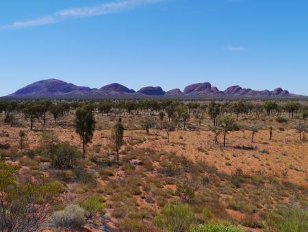 olgas: The Olgas in the red desert of Australia