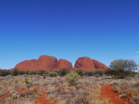olgas: The Olgas or Kata tjuta a sandstone formation in the Northern territory in Australia Stock Photo