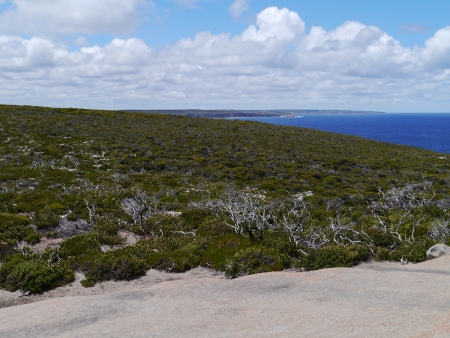 Flinders Chase is a national park on Kangaroo Island, South Australia photo