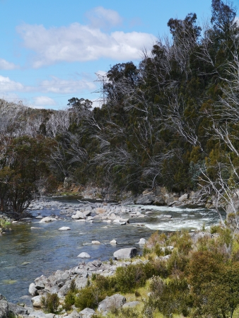 sneeuw bergen: River in the Snowy mountains above Jyndabyne in Australia Stockfoto