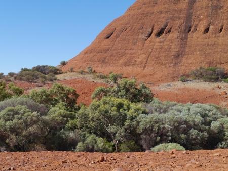 tjuta: The Walpa gorge in the Northern Territory in Australia