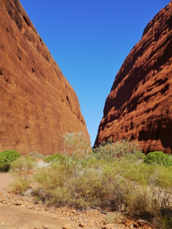 The Walpa gorge in the Olgas sandstone formation in the Northern Territory in Australia photo