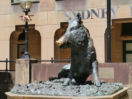 florentine: Il Porcellino is the local Florentine nickname for the bronze fountain of a boar in Sydney in Australia