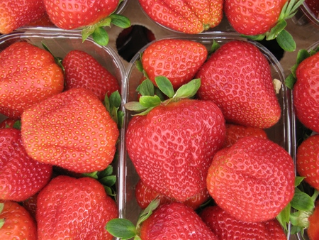 Strawberries in boxes at the greengrocer on the market place photo