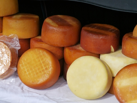 Croatian cheese from the island Pag photo