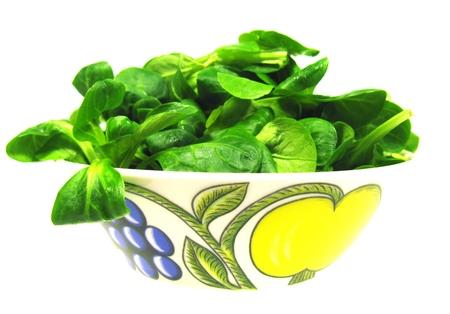 cornsalad: A bowl with Corn salad (Valerianella locusta) a edible leaf vegetable over white